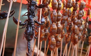 Scary looking but nice taste insects