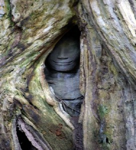 The finding of these hidden sculptures might be astonishment to all tourists.