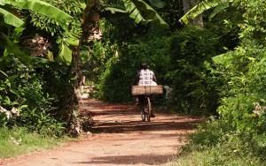 Battambang - an ideal destination for cycling