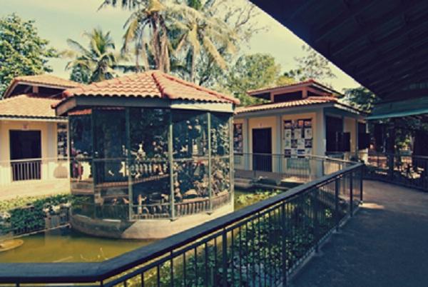 Landmine Museum, Cambodia