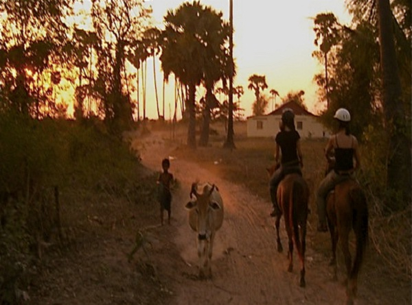 A ride through the paddy fields for sunset