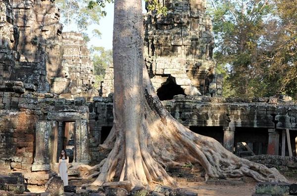 Angkor Wat – symbol of Cambodia