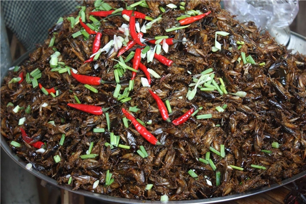 Deep-Fried Crickets