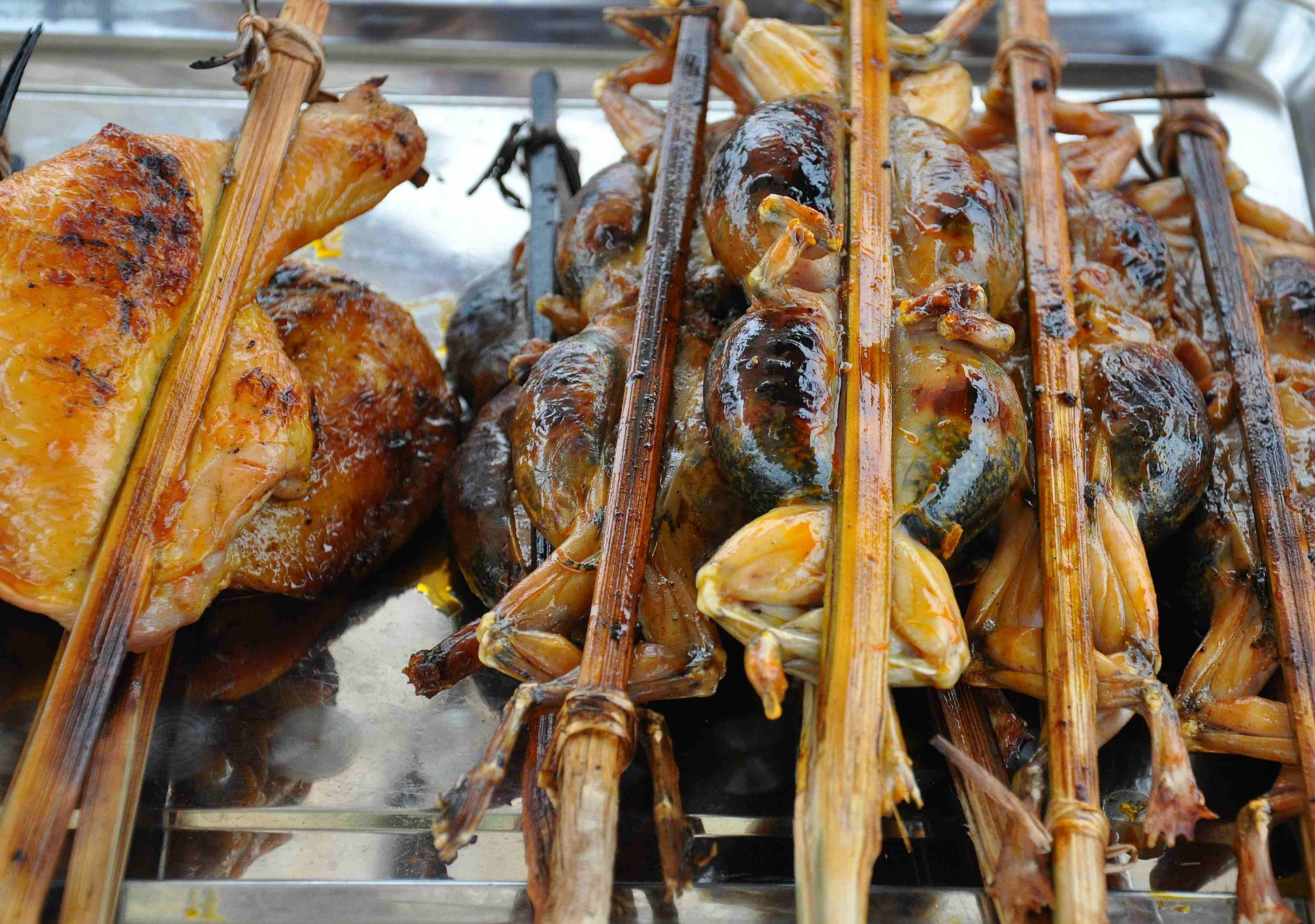 The entire frogs on bamboo skewers