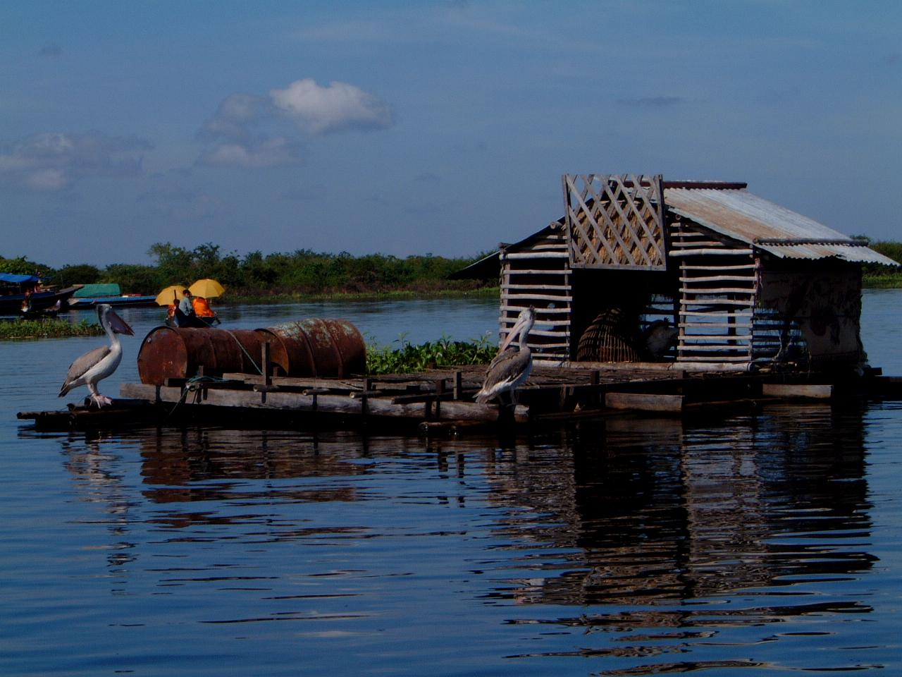 Chong Kneas floating village on Tonle Sap Lake