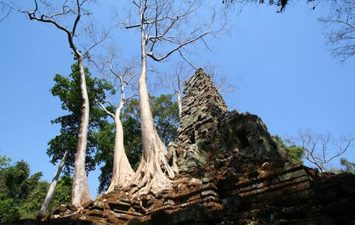Preah Palilay temple is worthy for us to visit when traveling to Siem Reap