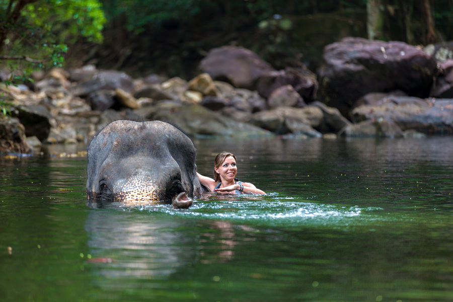 A chance to swim with elephants in the Elephant Valley Project in CambodiaA chance to swim with elephants in the Elephant Valley Project in Cambodia
