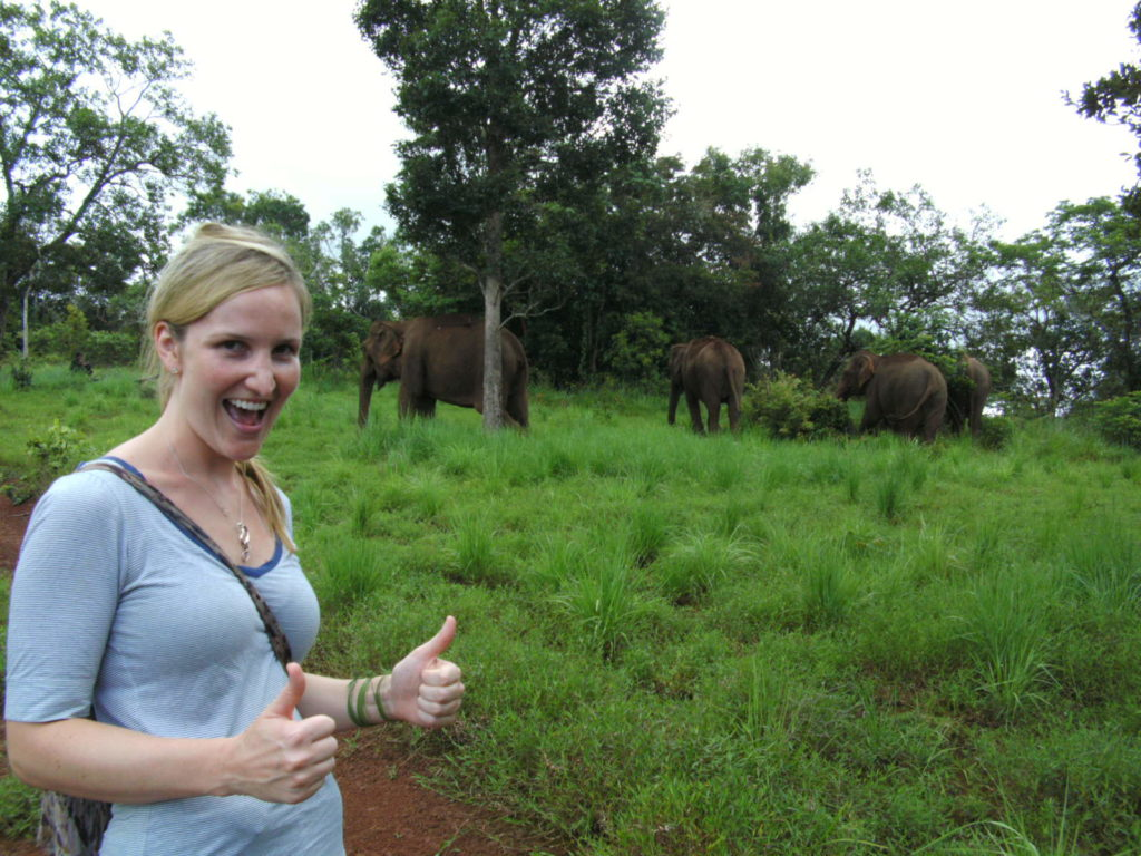 A visit to the EVP gives you a chance to see elephants in their natural environment